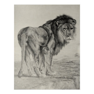 León majestuoso del vintage impresiones