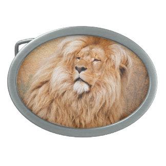 León majestuoso hebilla cinturon