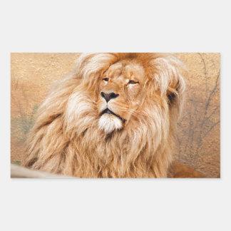 León majestuoso rectangular pegatina