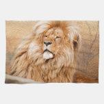 León majestuoso toallas de mano