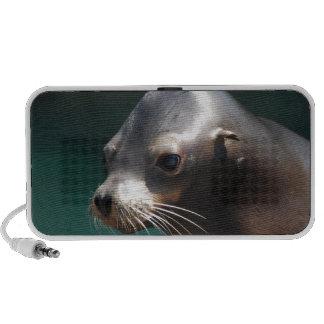León marino adorable laptop altavoz