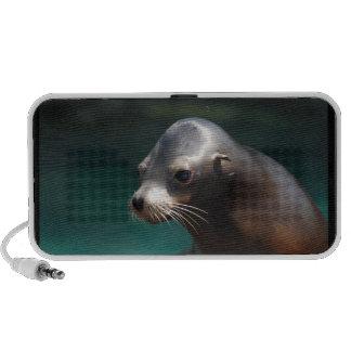León marino adorable iPod altavoz