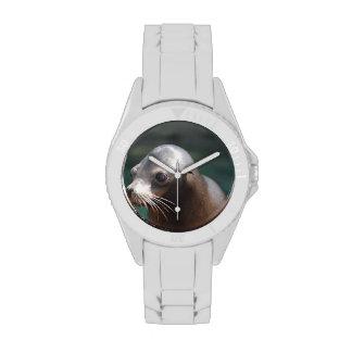 León marino con una cara linda relojes de pulsera