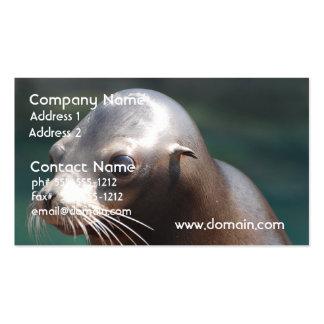 León marino con una cara linda tarjeta de visita
