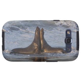 León marino de California Samsung Galaxy SIII Funda