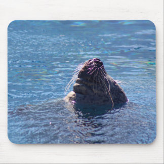 León marino de la natación mouse pads