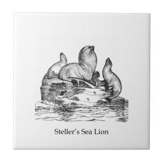 León marino de Steller Tejas Ceramicas