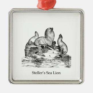 León marino de Steller Ornatos