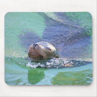 León marino; ¡En la nadada de cosas! Alfombrilla De Ratones