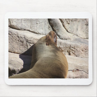 León marino mouse pad