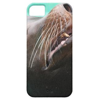 León marino Nosey iPhone 5 Carcasas
