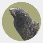 León marino pegatinas redondas