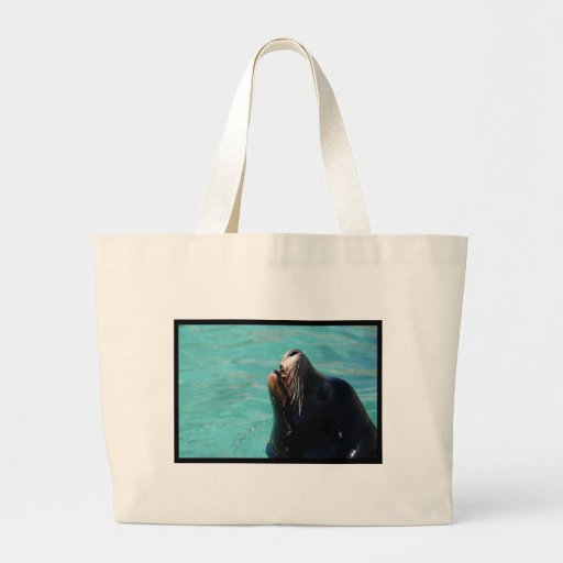 León marino que consigue un poco de aire bolsas