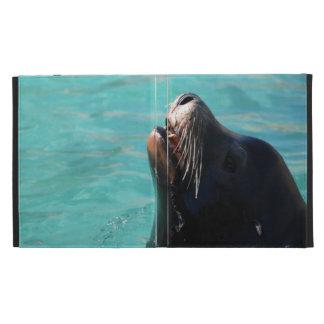León marino que consigue un poco de aire