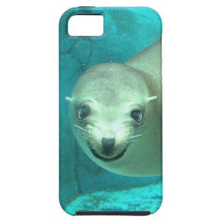 León marino sonriente - parque zoológico del Saint iPhone 5 Funda
