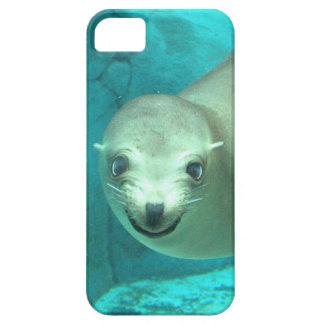 León marino sonriente - parque zoológico del Saint iPhone 5 Protectores
