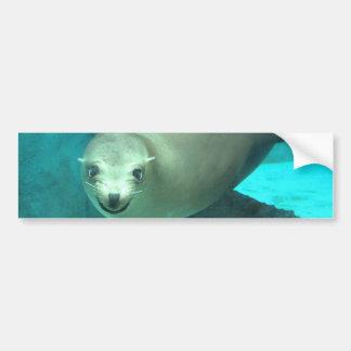 León marino sonriente - parque zoológico del Saint Pegatina Para Auto