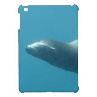 León marino subacuático