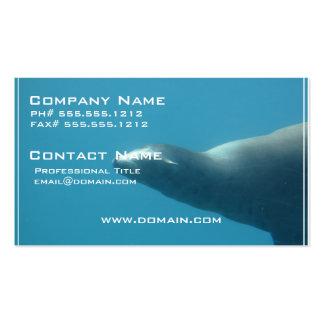 León marino subacuático tarjetas de visita