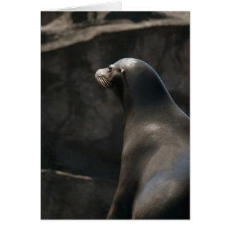 León marino tarjeta de felicitación
