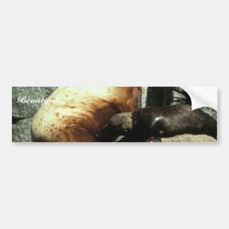 León marino y perrito de Steller Pegatina De Parachoque