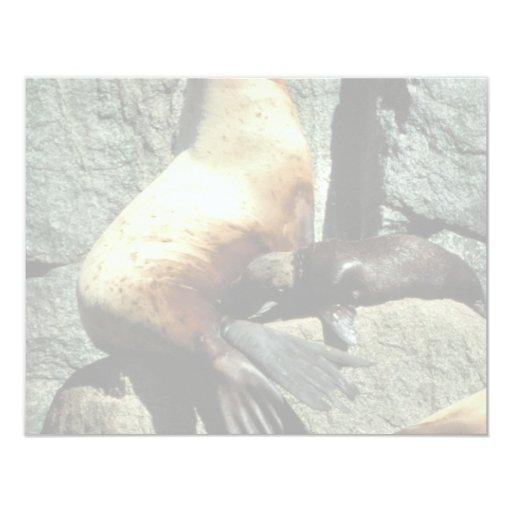 León marino y perrito de Steller Invitación 10,8 X 13,9 Cm