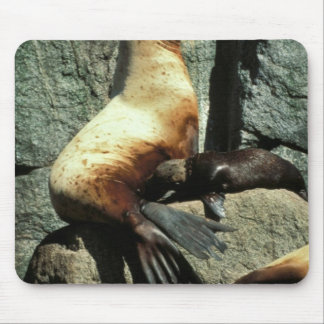 León marino y perrito de Steller Tapetes De Raton