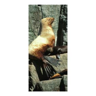 León marino y perrito de Steller Tarjeta Publicitaria Personalizada