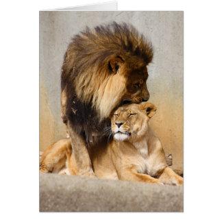 León masculino y femenino en amor felicitación