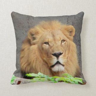León masculino y orgullo cojines