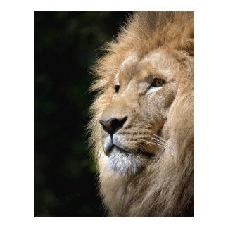 león membrete