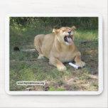 León Mousepad de Barbary Tapetes De Ratones