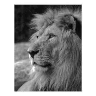 León negro y blanco - animal salvaje plantilla de membrete