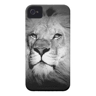 León negro y blanco iPhone 4 carcasas
