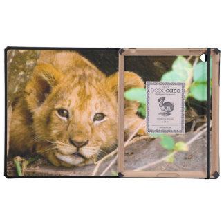 León (Panthera Leo) Cub en la cueva, Maasai Mara iPad Carcasas