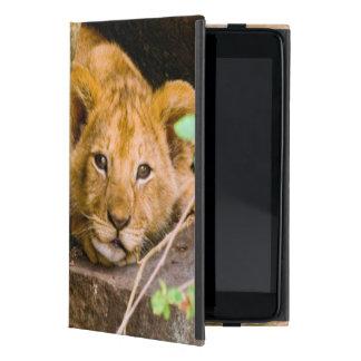 León (Panthera Leo) Cub en la cueva, Maasai Mara iPad Mini Fundas