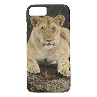 León, Panthera leo, parque nacional de Serengeti, Funda iPhone 7