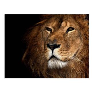 león postales