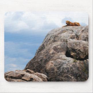 león que miente en una roca grande en Tanzania Áfr Tapete De Ratón