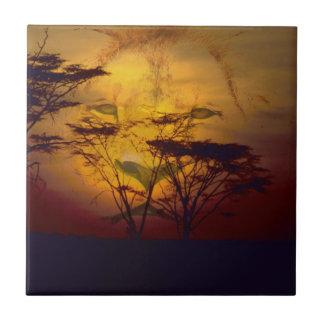 León que mira sobre puesta del sol africana azulejo cuadrado pequeño
