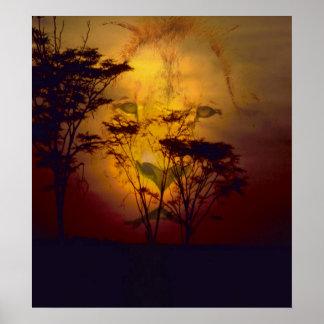 León que mira sobre puesta del sol africana posters