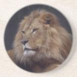 León que vigila sobre su orgullo posavasos manualidades