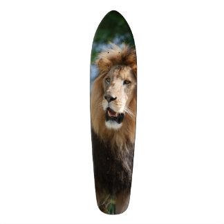 León real patinetas personalizadas