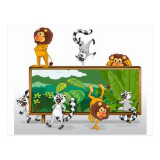 león y ardillas con el tablero postal