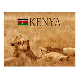 León y cachorro, Tsavo, Kenia Tarjeta Postal