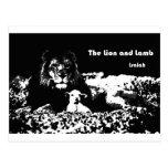 León y cordero blancos y negros tarjetas postales
