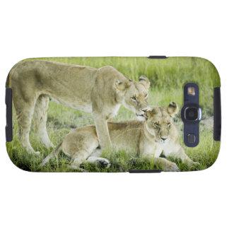 León y leona, África Galaxy S3 Fundas