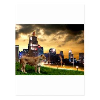 Leona en la ciudad tarjeta postal