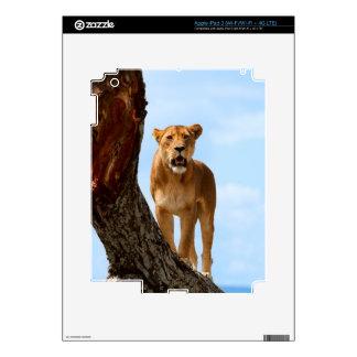 Leona iPad 3 Pegatina Skin
