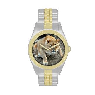 Leona - león - reloj adaptable de la fotografía